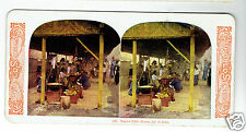 STEREOSCOPE SLIDE Java Tithe House 1905 stereoview