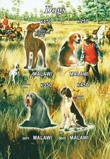 ** Dogs Pointer Collie Beagle Malawi 2012 MNH IMPERF  #C288