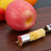 Apple Corer Stainless Steel Fruit Core SeedRemover Fruit Kitchen Tool Pip V8M3