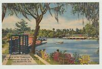 Unused Postcard Entrance Underwater Theatre Weekiwachee Spring Florida FL