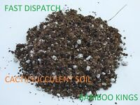 CACTI/SUCCULENT SOIL SUPER HIGH QUALITY - 1L TO 50L - CACTUS SUCCULENT COMPOST