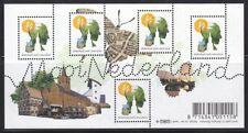 NVPH nr.2569 blok Mooi Nederland (34) 'Amersfoort' 2008 postfris (MNH)