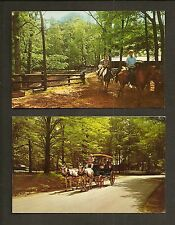 2 POSTCARDS:  McCORMICK'S CREEK STATE PARK, SPENCER, INDIANA - HORSE ACTIVITIES