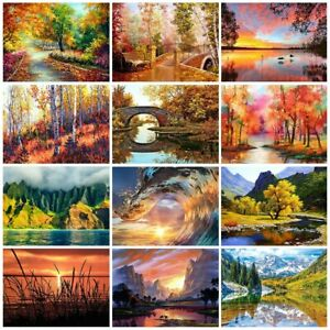 DIY OIL PAINTING KIT PAINT BY NUMBERS BEGINNERS FRAMELESS FOR ADULT AND CHILDREN