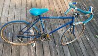 Vintage Huffy OMNI 10 Men's bike Blue steel frame. Sold as is rusted
