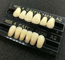 Zähne Vita A2 Premium Garnituren 28 Kunststoff Dental Prothese Zahn Technik