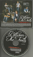 BETWEEN THE TREES The way She Feels w/ RARE RADIO EDIT PROMO DJ CD Single 2008