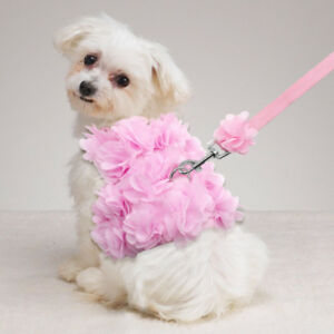 Small Girl Dog Harness Vest Leash Set Female Pet Clothes Puppy Cat Collar Lead