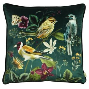 Midnight Garden Birds Green velour Cushion Covers by Evans Lichfield /