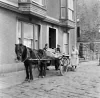 Horse And Cart In St Ives Cornwall 1954 OLD PHOTO 3