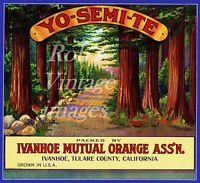 Ivanhoe Yosemite National Park Orange Citrus Fruit Crate Label Art Print