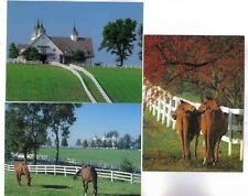 LOT OF 3 MANCHESTER FARM,MOST PHOTOGRAPHED BARN IN THE BLUEGRASS, PC,ALL MINT!