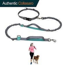 Laisse pour chien durable mains libres pour la course à pied, la marche, la