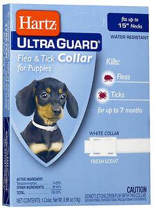 Hartz UltraGuard Flea & Tick Collar for Puppies, Water Resistant