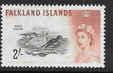 Lightly Hinged Birds Falkland Island Territory Stamps