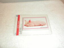 NEW LARGE JUMBO ERASER PICTURE OF PIG ON HIS BELLY