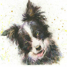 Fine Art Print COLIN the BORDER COLLIE DOG watercolour by HELEN APRIL ROSE  671