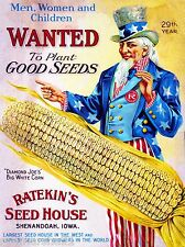 1910 Ratekin's Corn Vintage Flowers Seed Packet Catalogue Advertisement Poster