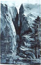 DEER IN YOSEMITE PARK MERCED RIVER CANYON MOUNT LYELL ~ 1888 Landscape Art Print