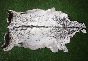 "New GOAT Western taxidermy Hide Rug Natural Fur Goat Hide 50533 (41"" X 26"" )"
