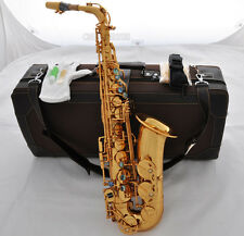 New Professional Mark VI Model Alto Saxophone Gold finish E-flat Sax With Case