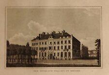 BELGICA/ BELGIUM,der Königliche pallast zu Brüssel, grabado  mediados s. XIX
