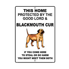 Blackmouth Cur Dog 00006000  Home protected by Good Lord and Novelty Metal Sign