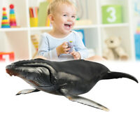 Marine Humpback Whale Ocean Animal Figure Model Kids Children Toy Gifts