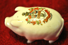 TEMPLE CRESTED CHINA MINIATURE PIG - 'CHATHAM'
