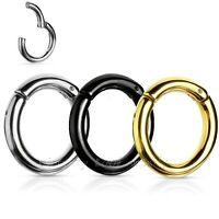 1PC. Hinged Seamless Segment Ring PVD Surgical Steel Hoop Earring Septum Clicker