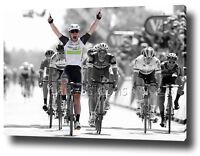 MARK CAVENDISH CANVAS PRINT POSTER PHOTO 2016 TOUR DE FRANCE CYCLING WALL ART