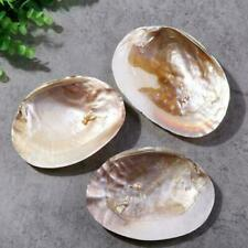 Concha de mar
