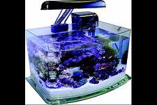 JBJ 3 Gallon Curved Glass Picotope Fish Tank Aquarium Lamp/Filter Included MX-30