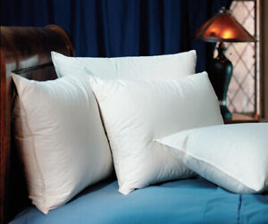 2 Pacific Coast Down Surround King Pillows found at Marriott Hotels
