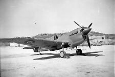 RAF Kittyhawk Malta. World War 2 photograph