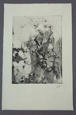 Horst Janssen Glas mit trockenen Rosen Radierung 1973 handsigniert