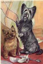 Cairn / Skye Terrier - Matted Dog Art Print - German / New U