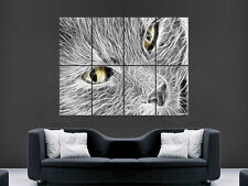 CAT TRIPPY  DIGITAL ART WALL PICTURE POSTER  GIANT HUGE IMAGE