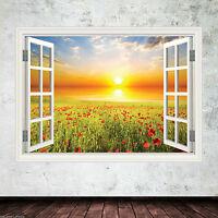 Poppy Window Frame Full Colour wall art sticker decal transfer Graphic WSD342
