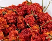 Carolina Reaper Dried Whole Pepper Pods World's Hottest 1/4oz Hotter Than Ghost
