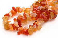 Semi Precious Carnelian Chip Beads 36 Inch Strand