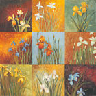 """36W""""x36H"""" IRIS FIELDS I by JANG MARISS - FLORAL SQUARE DESIGN- CHOICES of CANVAS"""