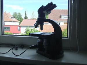 leitz mikroskop 4 Okulare ,Beleuchtung profigerät