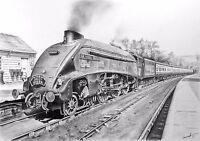 TRAIN PRINT Limited Edition Signed Art Drawing Class A4 LNER SIR NIGEL GRESLEY