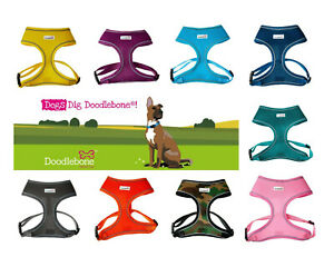 Doodlebone Dog Harness puppy AirMesh Padded Soft Walking Vest 5 Sizes 13 Colours