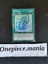 Yu-Gi-Oh! Blizzard : ROTD-FR063 SR