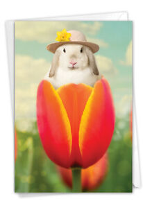1 Funny Easter Card with Envelope - Bunny Tulip Easter C9223EAG