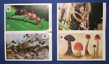 4 EDEKA WWF Sticker Unser Wald Sammelbilder Sammel Bild Bilder Nr. 22 75 131 178
