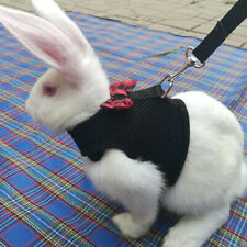 Black/Red Adjustable Soft Harness with Elastic Leash for Rabbit Bunny Us