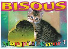 CHAT  Chaton  carte postale n° 339 - 78 Bisous Mon p'tit Coeur !   carte découpé